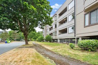"""Photo 20: 203 5224 204 Street in Langley: Langley City Condo for sale in """"SOUTH WYNDE COURT"""" : MLS®# R2600463"""