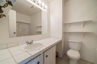 Photo 15: 217 Aboyne Place NE in Calgary: Abbeydale Semi Detached for sale : MLS®# A1104052