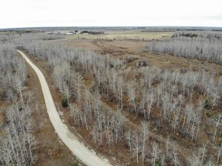 Photo 13: 68055 Beaver Creek Road in Whitemouth Rm: Whitemouth Residential for sale (R18)  : MLS®# 202026463