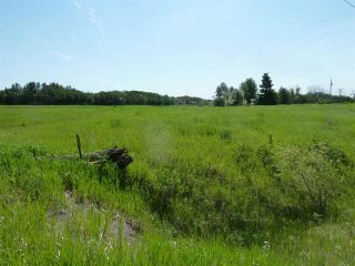 Photo 31: 57525 Rg Rd 214: Rural Sturgeon County Rural Land/Vacant Lot for sale : MLS®# E4266088