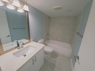 Photo 36: 23 Erin Meadows Court SE in Calgary: Erin Woods Detached for sale : MLS®# A1124454