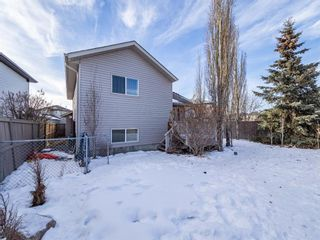 Photo 32: 139 Springs Crescent SE: Airdrie Detached for sale : MLS®# A1065825