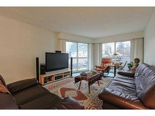 Photo 1: 211 3353 Heather Street in Vancouver: Cambie Condo  (Vancouver West)  : MLS®# V1101264