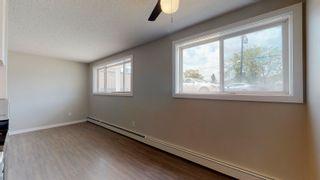Photo 10: 102 8930 149 Street in Edmonton: Zone 22 Condo for sale : MLS®# E4253426