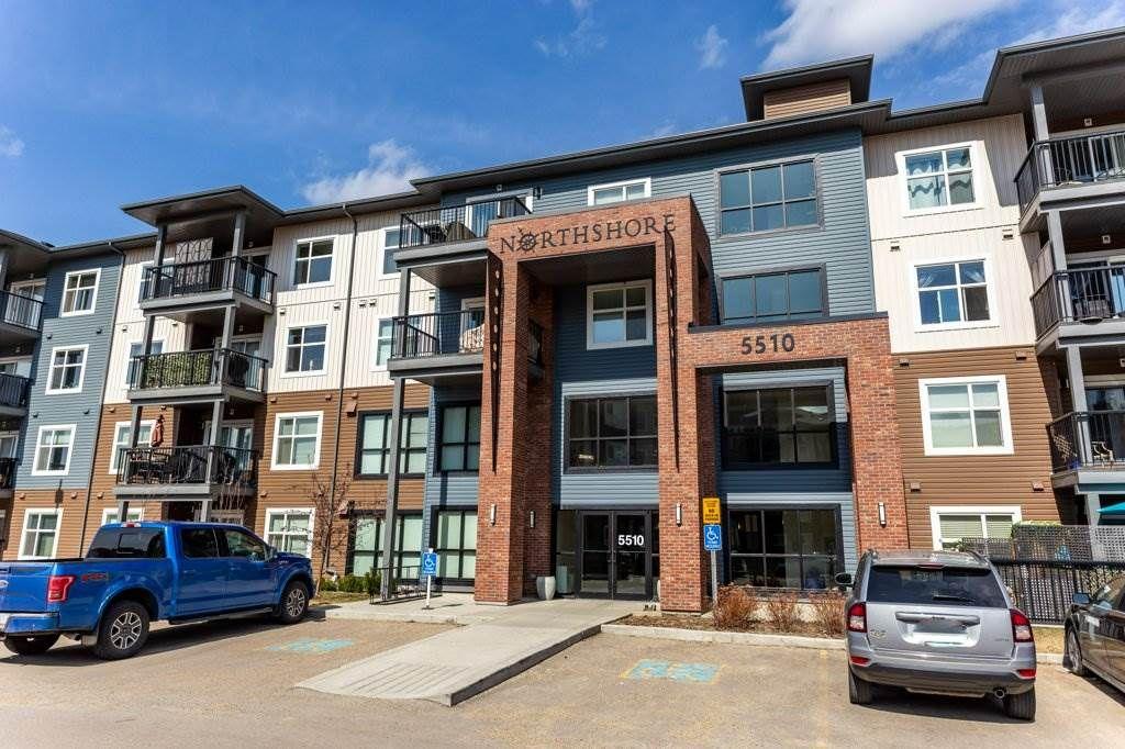 Main Photo: 203 5510 SCHONSEE Drive in Edmonton: Zone 28 Condo for sale : MLS®# E4237061