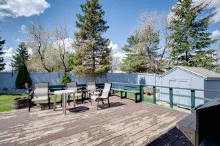 Photo 40: 3616 31A Street in Edmonton: Zone 30 House for sale : MLS®# E4244166