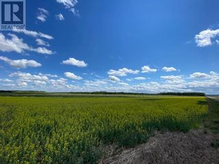 Photo 5: Range Road 83 Township Rd 571 in Mayerthorpe: Vacant Land for sale : MLS®# A1096379