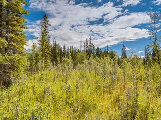 Photo 7: 20 34364 RANGE ROAD 42: Rural Mountain View County Land for sale : MLS®# A1017805