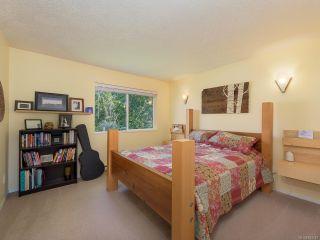 Photo 6: B 2425 1st St in COURTENAY: CV Courtenay City Half Duplex for sale (Comox Valley)  : MLS®# 843142