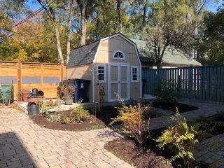 Photo 19: Lower 10 Sylvan Avenue in Toronto: Dufferin Grove House (3-Storey) for lease (Toronto C01)  : MLS®# C4688128