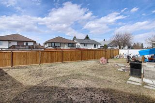 Photo 31: 23 Applecrest Court SE in Calgary: Applewood Park Detached for sale : MLS®# A1079523