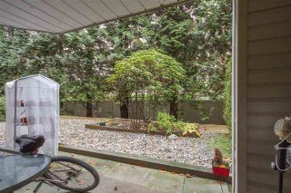 """Photo 13: 108 1215 PACIFIC Street in Coquitlam: North Coquitlam Condo for sale in """"PACIFIC PLACE"""" : MLS®# R2319128"""