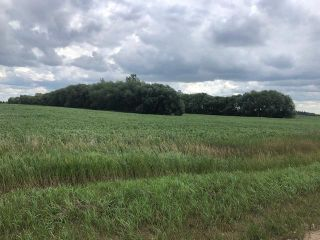 Photo 3:  in Beausejour: Vacant Land for sale : MLS®# 202119454