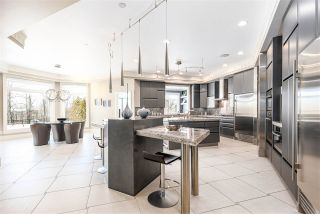 Photo 11: 16 WINDERMERE Drive in Edmonton: Zone 56 House for sale : MLS®# E4190317