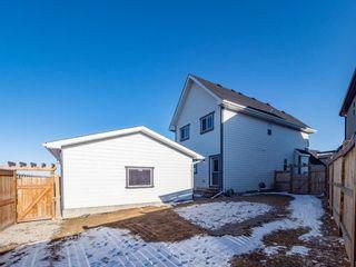 Photo 24: 83 Mahogany Grove SE in Calgary: Mahogany Detached for sale : MLS®# A1091068