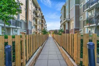 """Photo 30: 215 20696 EASTLEIGH Crescent in Langley: Langley City Condo for sale in """"The Georgia"""" : MLS®# R2598741"""