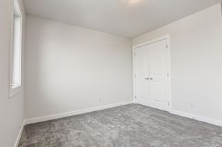 Photo 42: 216 Red Sky Terrace NE in Calgary: Redstone Detached for sale : MLS®# A1125516