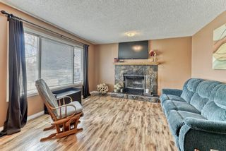 Photo 16: 424 Cole Crescent: Carseland Detached for sale : MLS®# A1106001