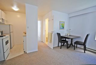 Photo 17: 117 Superior St in : Vi James Bay House for sale (Victoria)  : MLS®# 866434