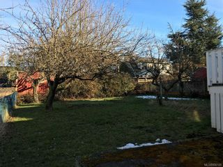 Photo 21: 2333 Belmont Ave in : Vi Fernwood House for sale (Victoria)  : MLS®# 806120