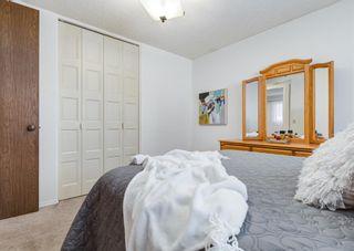 Photo 16: 387 Maitland Crescent NE in Calgary: Marlborough Park Detached for sale : MLS®# A1126572