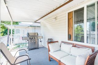 Photo 23: 23016 CLIFF Avenue in Maple Ridge: East Central House for sale : MLS®# R2608363