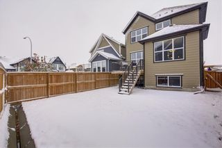 Photo 24: 154 MASTERS Point SE in Calgary: Mahogany Detached for sale : MLS®# C4297917