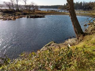 Photo 5: 161 Colvilleton Trail in : Isl Protection Island Land for sale (Islands)  : MLS®# 870953