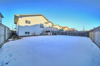 Photo 48:  in Edmonton: Zone 28 House for sale : MLS®# E4224732