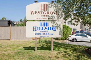 """Photo 20: 228 22555 116 Avenue in Maple Ridge: East Central Townhouse for sale in """"Hillside at Fraser Village"""" : MLS®# R2557464"""