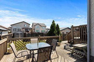 Photo 15: 156 Redonda Street in Winnipeg: Canterbury Park Residential for sale (3M)  : MLS®# 202113904