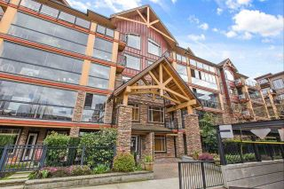 """Photo 3: 386 8288 207A Street in Langley: Willoughby Heights Condo for sale in """"Yorkson Creek"""" : MLS®# R2582373"""