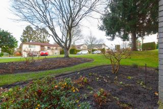 Photo 31: 101 1597 Mortimer St in : SE Mt Tolmie Condo for sale (Saanich East)  : MLS®# 855808