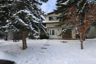 Photo 31: 547 Templeby Place NE in Calgary: Temple Detached for sale : MLS®# A1071164