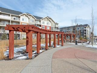 Photo 23: 2202 155 SKYVIEW RANCH Way NE in Calgary: Skyview Ranch Condo for sale : MLS®# C4104969