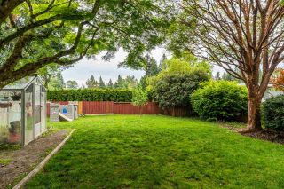 Photo 31: 32550 FLEMING Avenue in Mission: Mission BC House for sale : MLS®# R2589074