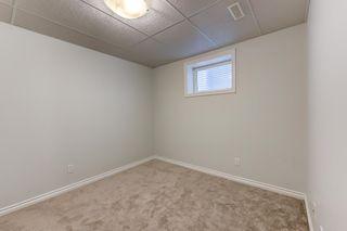 Photo 29: 4608 162A Avenue in Edmonton: Zone 03 House for sale : MLS®# E4255114