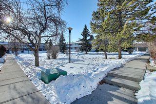 Photo 33: 63 740 Bracewood Drive SW in Calgary: Braeside Row/Townhouse for sale : MLS®# A1058540