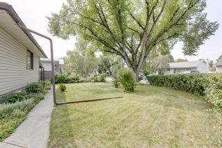 Photo 38: 2935 Burgess Drive NW in Calgary: Brentwood Detached for sale : MLS®# A1132281