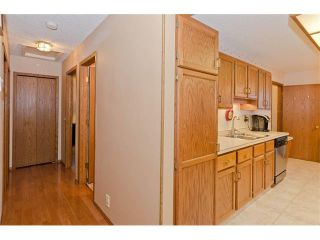 Photo 26: 203 SHAWCLIFFE Circle SW in Calgary: Shawnessy House for sale : MLS®# C4089636