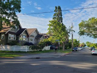 Photo 36: 93 LINDEN Ave in : Vi Fairfield West House for sale (Victoria)  : MLS®# 877428