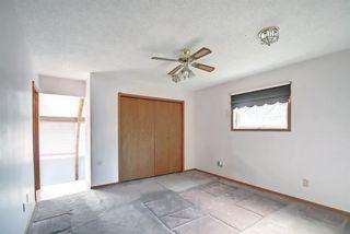 Photo 22: 29 Namaka Drive: Namaka Detached for sale : MLS®# A1142156