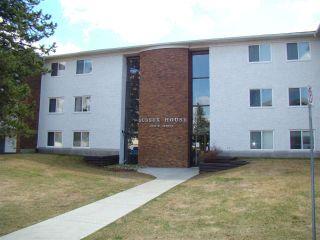 Photo 1: 304 14825 51 Avenue in Edmonton: Zone 14 Condo for sale : MLS®# E4244015