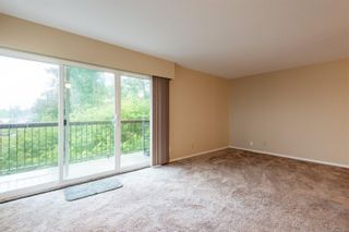 Photo 7: 205 615 Alder St in Campbell River: CR Campbell River Central Condo for sale : MLS®# 887616