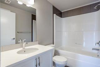 Photo 16: 402 8525 91 Street in Edmonton: Zone 18 Condo for sale : MLS®# E4266193