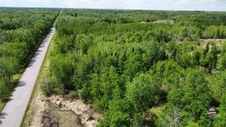 Photo 7: N/W Corner Rang 204 & Twp Rd 510: Rural Strathcona County Rural Land/Vacant Lot for sale : MLS®# E4247043