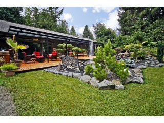 Photo 56: 34741 IMMEL Street in Abbotsford: Abbotsford East House for sale : MLS®# F1321796
