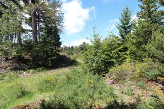 Photo 10: Lot 34 Goldstream Heights Dr in : ML Shawnigan Land for sale (Malahat & Area)  : MLS®# 878268