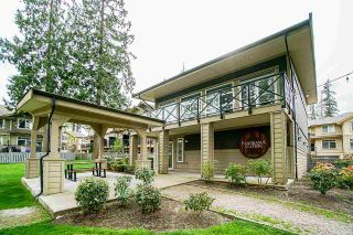 "Photo 36: 45 5957 152 Street in Surrey: Sullivan Station Townhouse for sale in ""Panorama Station"" : MLS®# R2574670"