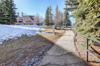 Photo 32: 6 210 Village Terrace SW in Calgary: Patterson Apartment for sale : MLS®# A1080449